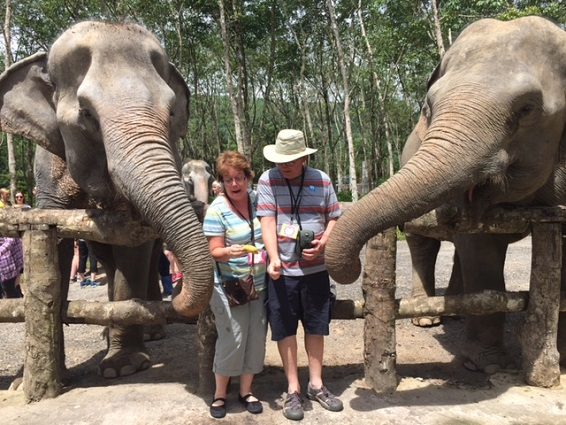 SU Incentive Trip, Phuket, Thailand, Phuket Elephant Sanctuary