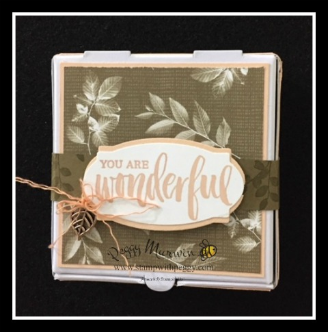 Nature's Suite, Rooted in Nature Stamp Set, Nature's Poem Designer Paper, Pizza Box, Suite Surprise, Treat Packaging