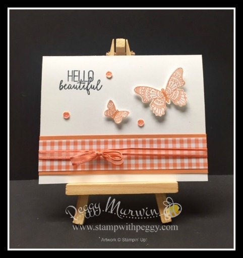 Butterfly Gala Stamp Set, Butterfly Duet Punch, Gingham Gala Designer Paper, One Sheet Wonder, Stamp with Peggy
