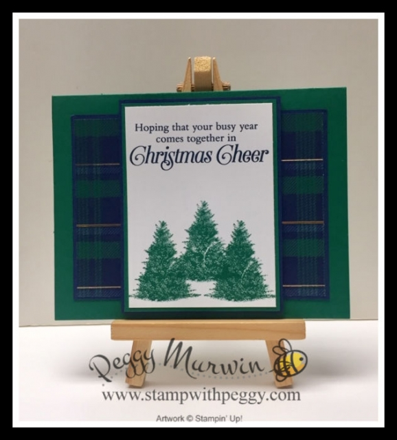 Wrapped in Plaid Suite, Perfectly Plaid Stamp Set, Pine Tree Punch, Wrapped in Plaid Designer Paper, Christmas, Stamp with Peggy
